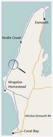 map of ningaloo